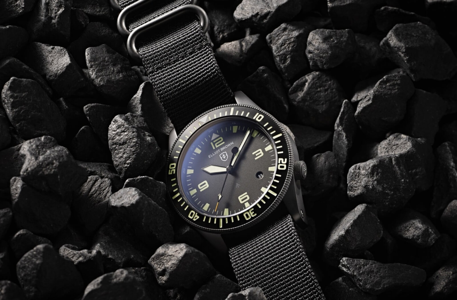Elliot Brown Holton Professional