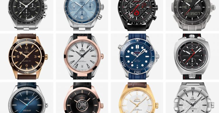 A Beginner's Guide To Every Omega Model